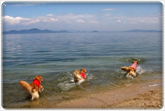 2010,6,10琵琶湖11