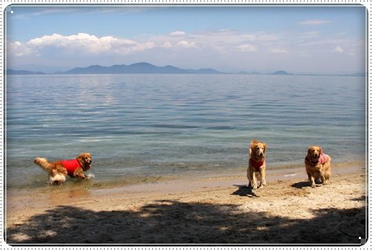 2010,6,10琵琶湖12