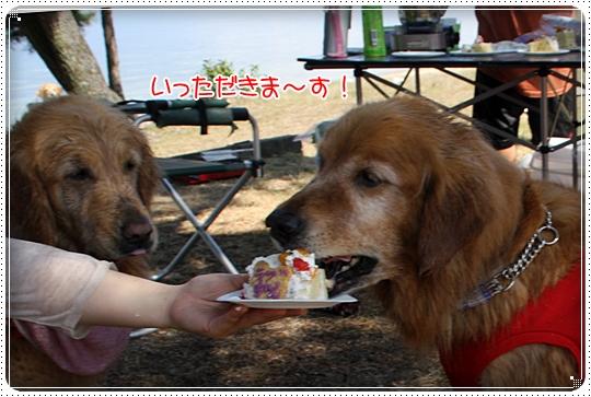 2010,6,11琵琶湖10