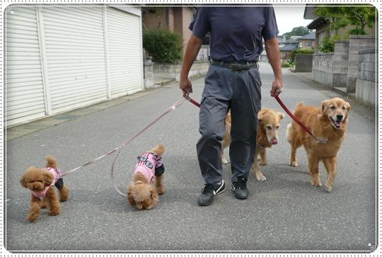 2010,6,13お散歩2