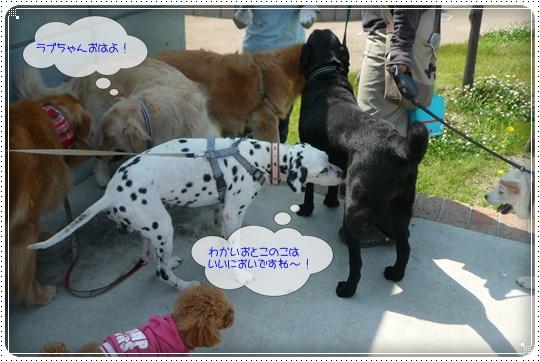 2010,6,17お散歩4