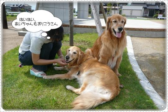 2010,6,19お散歩7