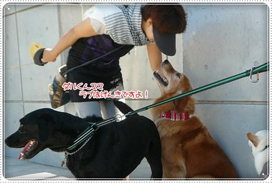 2010,6,24お散歩7