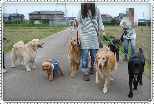 2010,6,25お散歩5