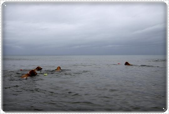 2010,6,28海1