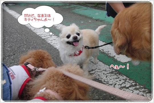 2010,6,29お散歩11