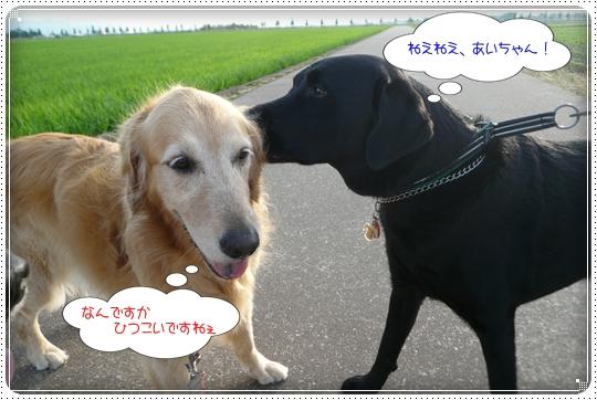 2010,6,30お散歩6
