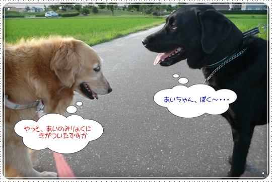 2010,6,30お散歩7
