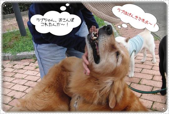 2010,7,5お散歩3