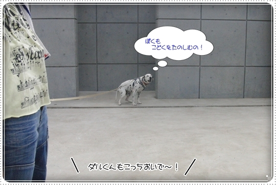 2010,7,6お散歩9