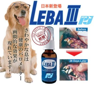 LEBA3.jpg