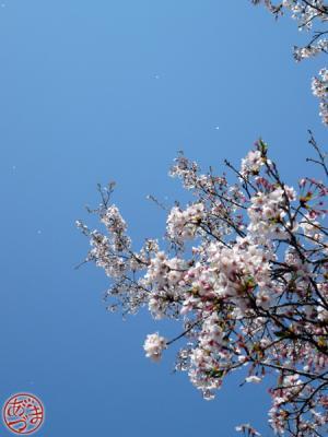 090412_4.jpg