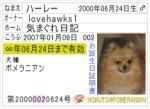 b-card002.jpg