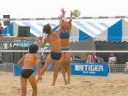 beach_volleyball_004_s2_convert_20090725233043.jpg
