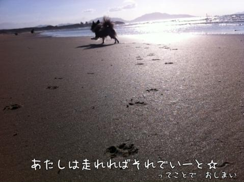 dMLab.jpg