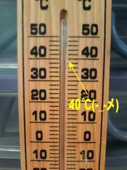 会社の温度計