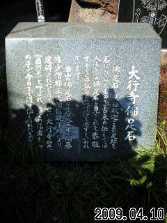 20090410135318