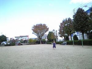 20081129152225