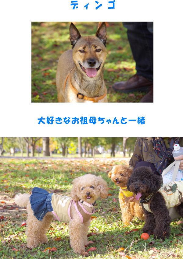 20071104011342.jpg