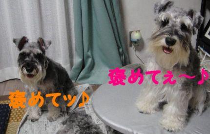 爽やか(!?)母娘