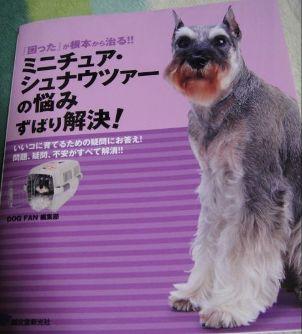 200910モデル犬