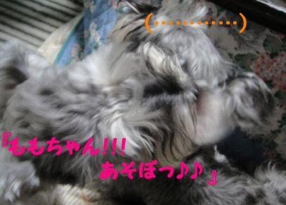 ひめのお誘い3
