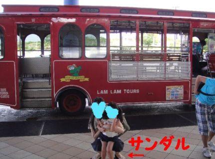 バスと一緒