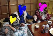 DSC03393shimane.jpg