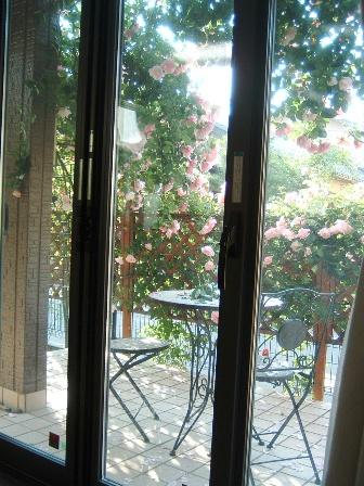 terrace09-3.jpg