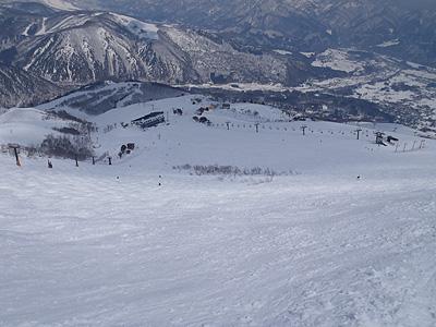forblogpic_20110329150123.jpg