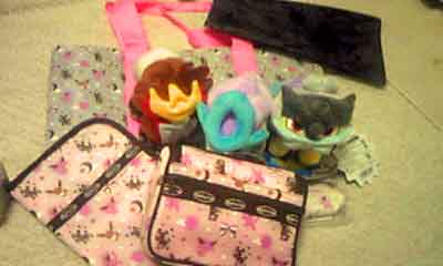 エーフィ ブラッキー pokemon time