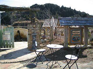 2005-2-26rt7.jpg