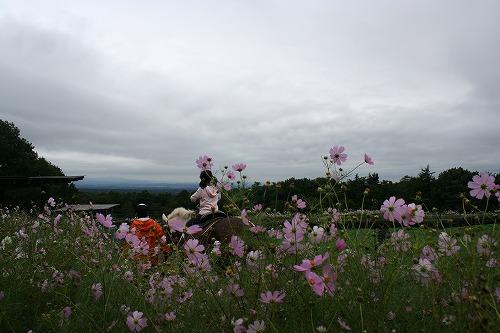 2005-9-那須