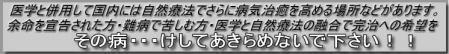 ewfeftgr_20090819220053.jpg