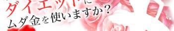 p_h1_2.jpg
