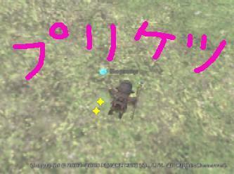 Mop050611012806b.jpg