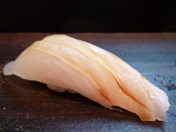 サメガレイ