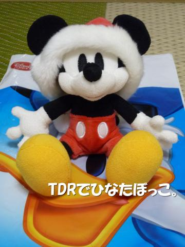 P1000163(1)_convert_20091103212727.jpg