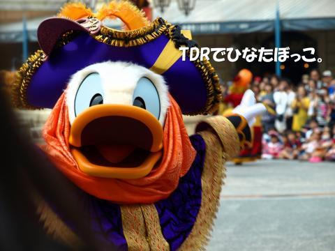 マウスカ ドナ1
