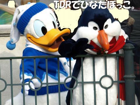 PC050274_convert_20091114115031.jpg
