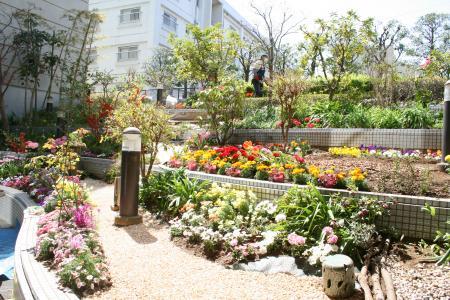 さんぽみち花壇1