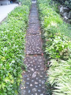 じいちゃんの庭
