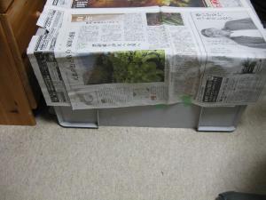 新聞紙で覆うなよ…