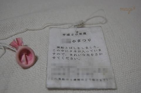 pict_DSC6358.jpg
