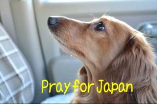IMG_1294アトムPrayforJapan