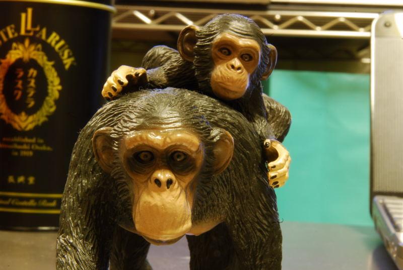 親子チンパン2