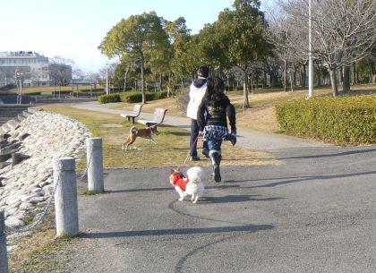 公園内お散歩