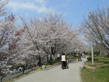 市内の公園