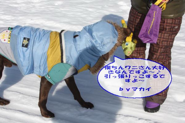 2011_02_26_0402.jpg