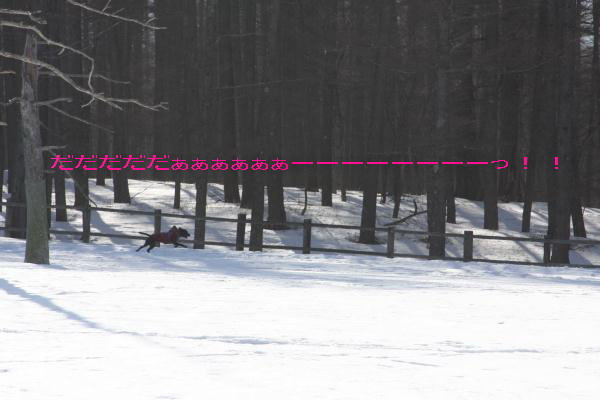 2011_02_26_0412.jpg